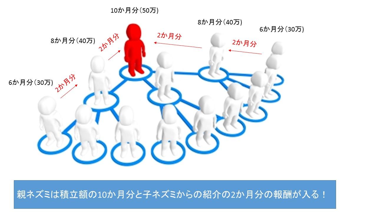 海外投資詐欺(ネットワークビジネス)
